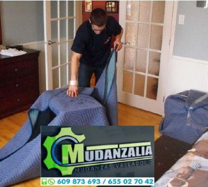 Buscar empresas de mudanzas en Cogeces del Monte Valladolid
